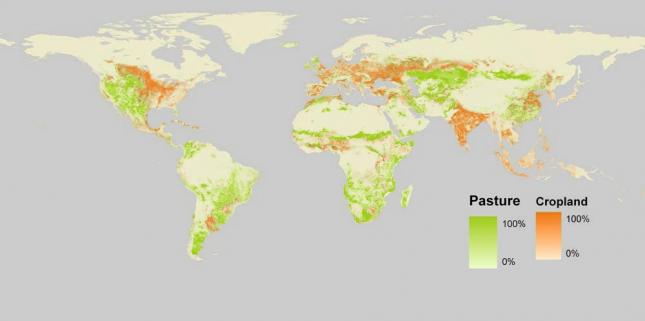 World Map of Cropland and Pastureland – SAGE0