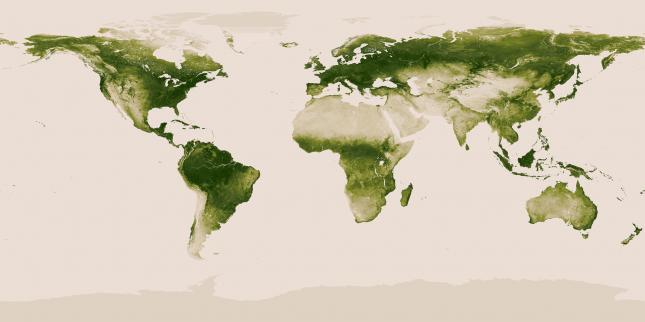 World Map of the Earths vegetation – NOAA