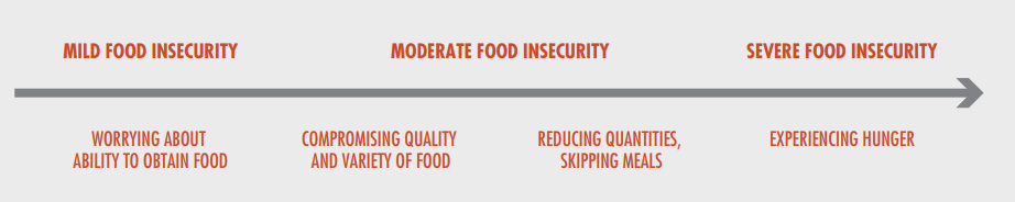 Food insecurity scale