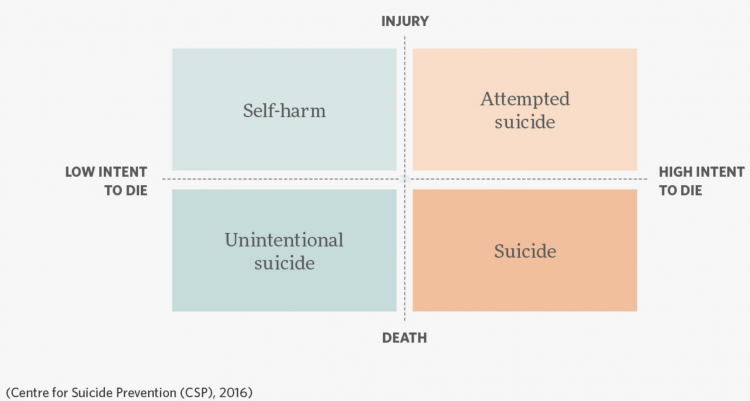 Self harm vs suicide csp 2016