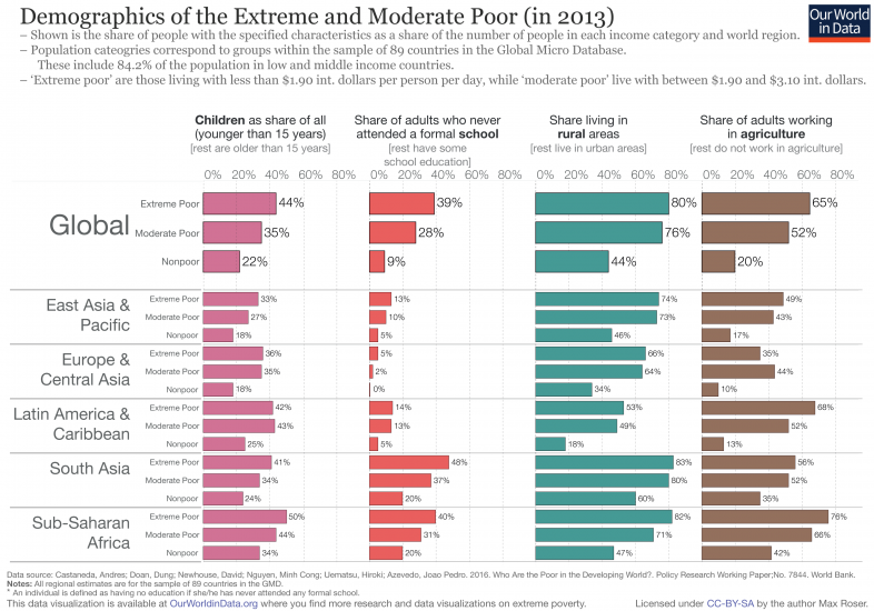Demographics of the extreme and moderate poor in 2013