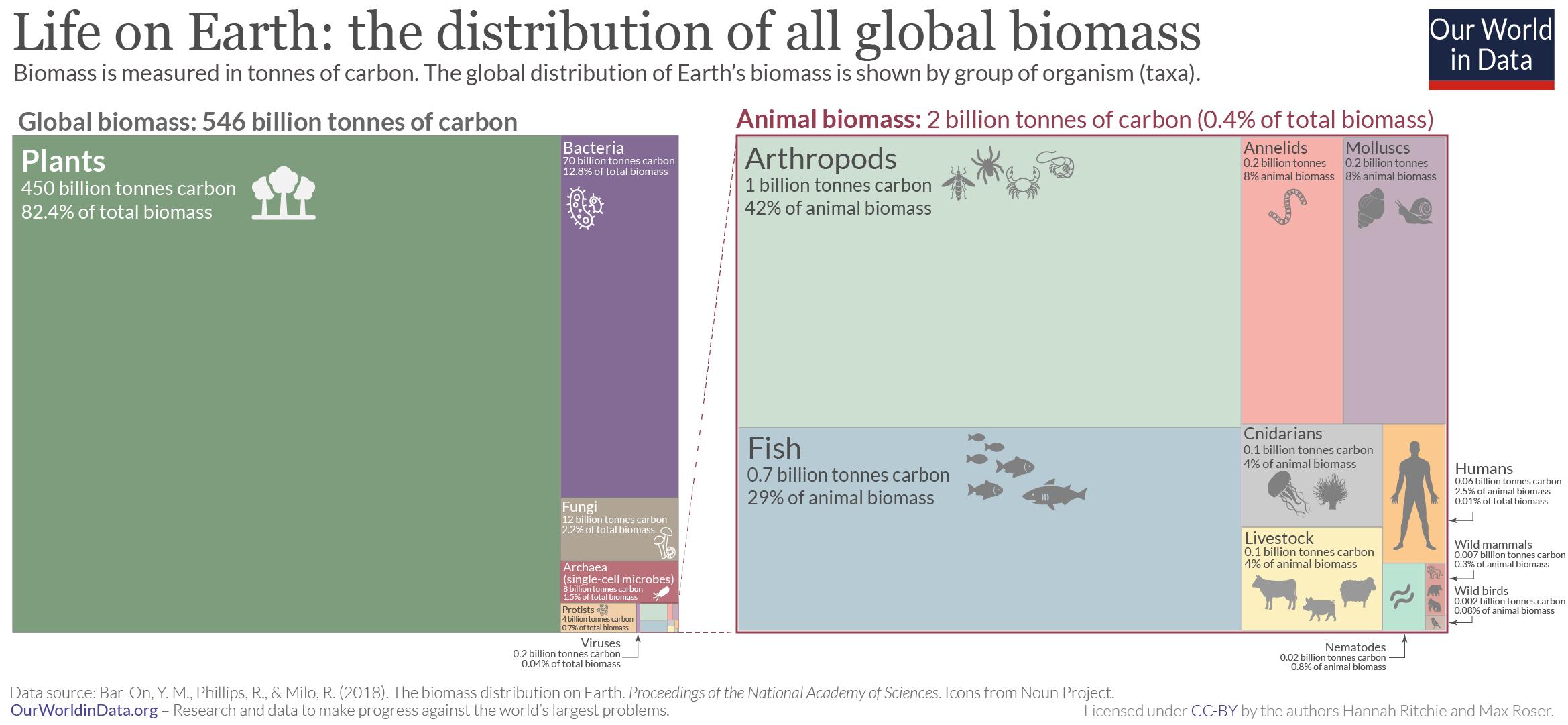 Global taxa biomass