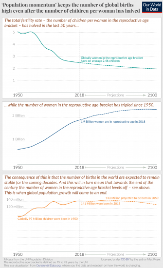 Population momentum 1