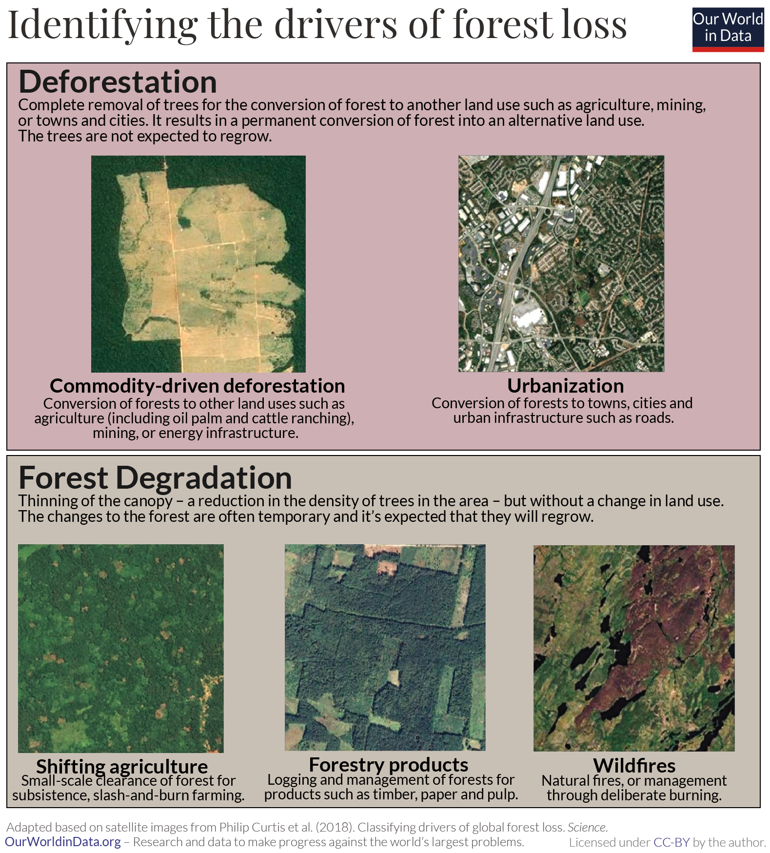 Identifying drivers of forest loss