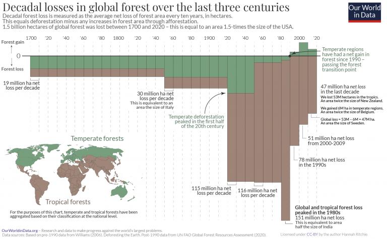 Pérdida de bosques a largo plazo - marimekko