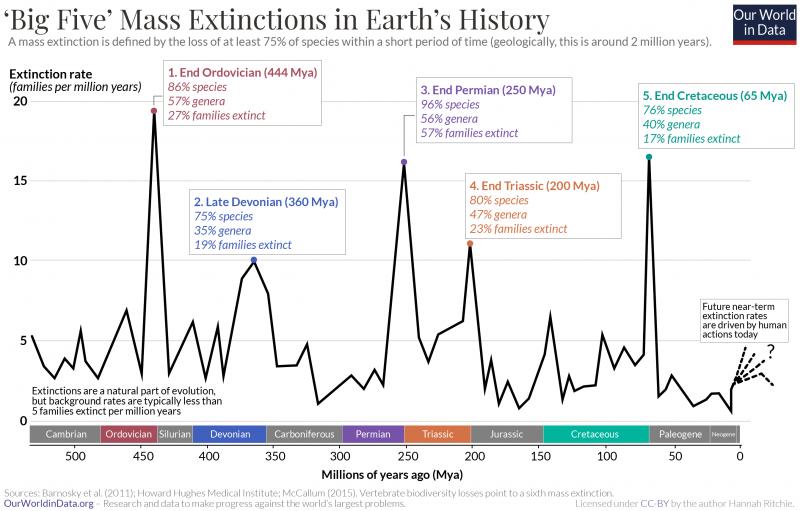 Big five mass extinctions