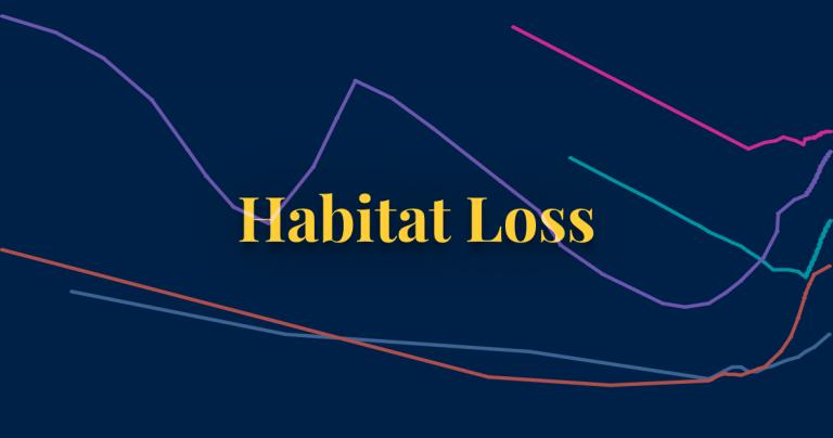 Habitat loss thumbnail