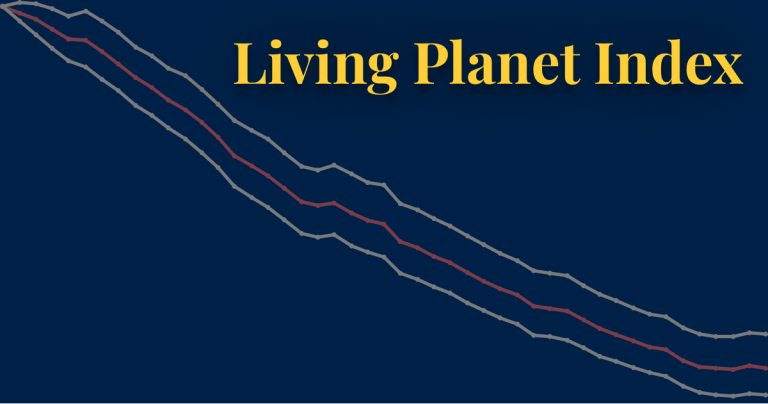 Living planet index thumbnail