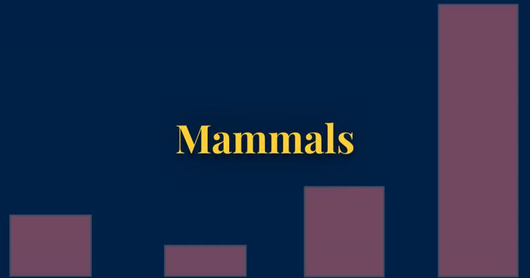 Mammals thumbnail