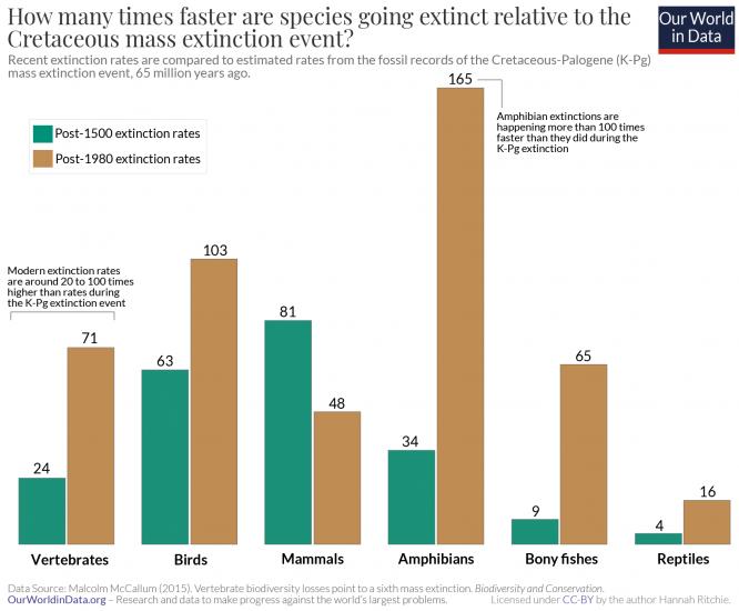 Rate mass extinctions vs. cretaceous mccallum 2015