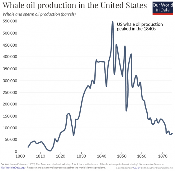 Whale oil production in the us