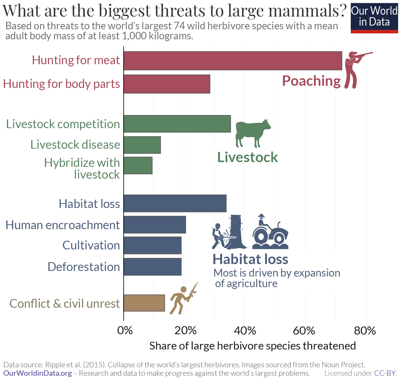 What are the largest threats to large mammals