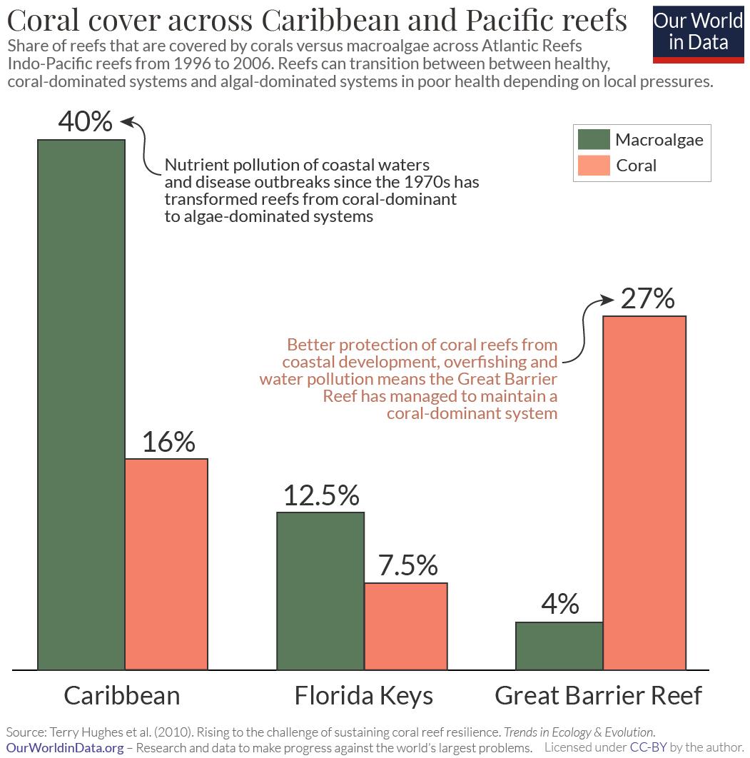 Caribbean and pacific coral vs. algae cover