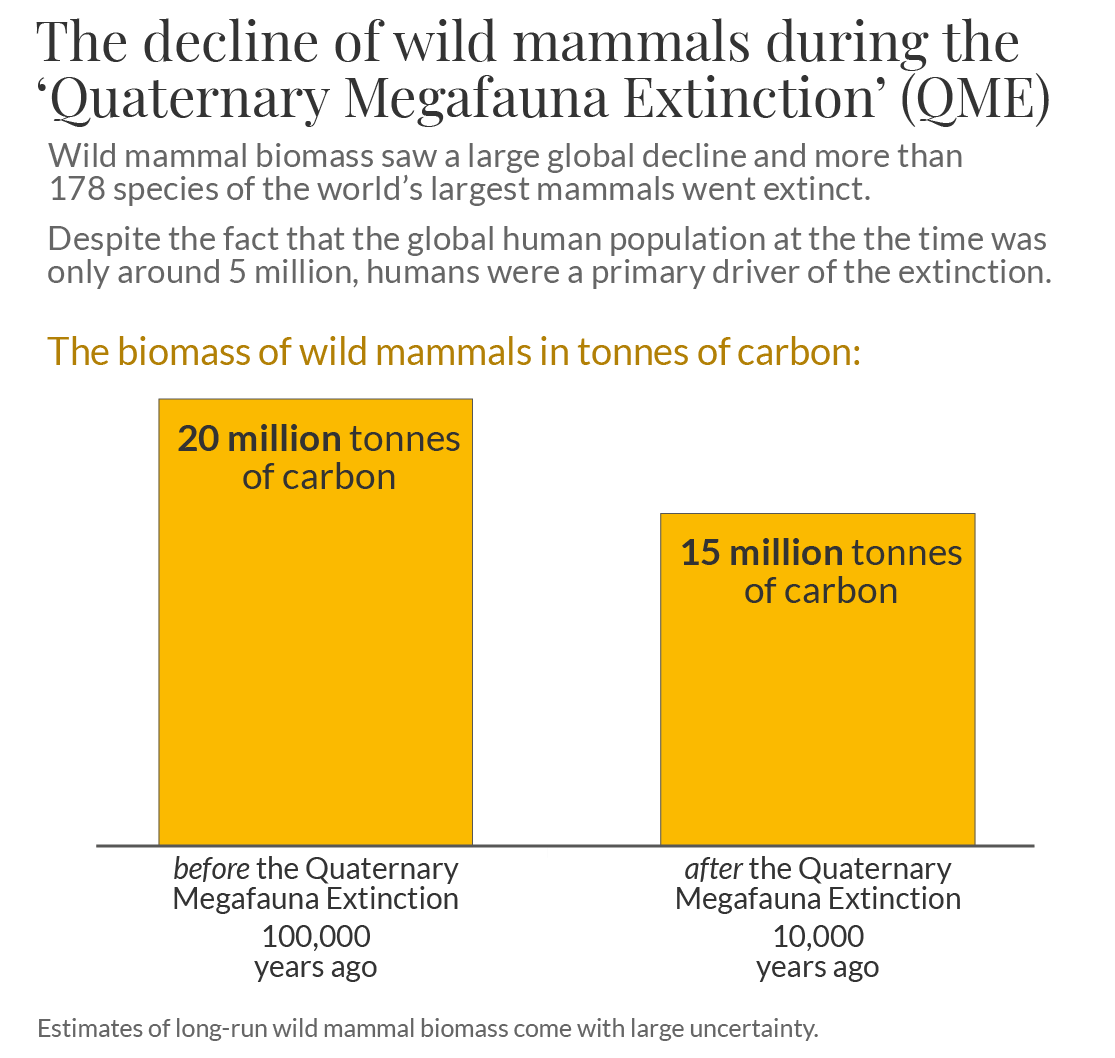 Wild mammal biomass qme