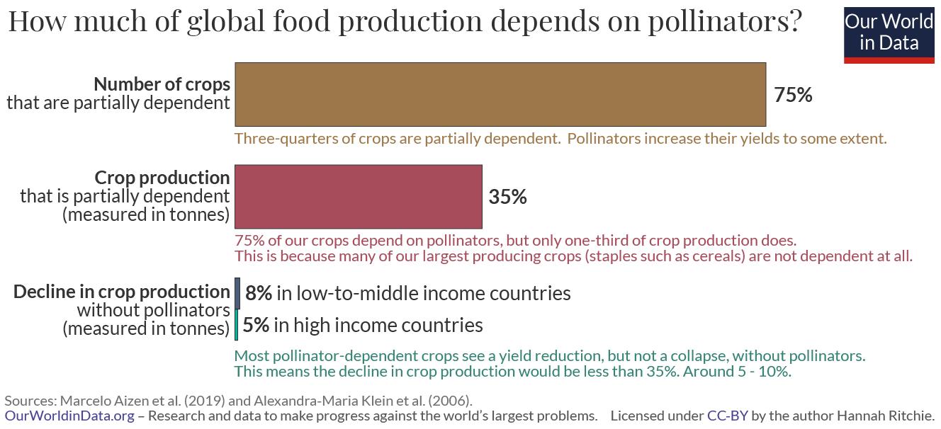 Global food dependency on pollinators