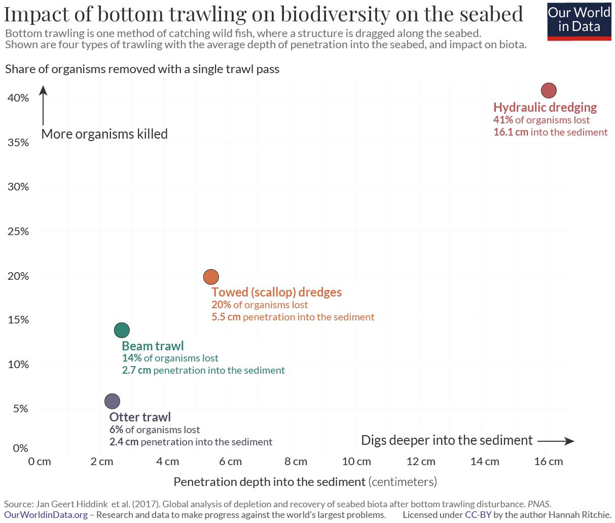 Impact of trawling on biota